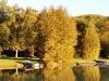 Lakeside Cottage Rental near Glen Arbor